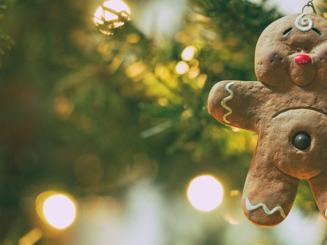 How To Keep Your Christmas Tree Fresh -- via www.katelynnansari.com #christmastree #realchristmastree #decorating #familygoals #christmasoutfit